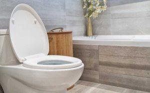 Best Toilet Seats Featured