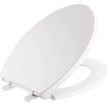 Delta Faucet Morgan Round Front Slow-Close White Toilet Seat